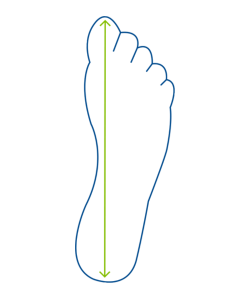 Measure the distance from the end of your big toe to your heel